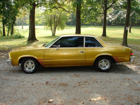 1979 Chevrolet Malibu EFI 350 4 Speed for sale