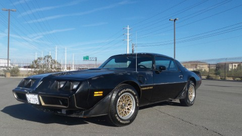 1979 Pontiac Trans Am Bandit SE Untouched Original Paint BIG Block BLACK for sale