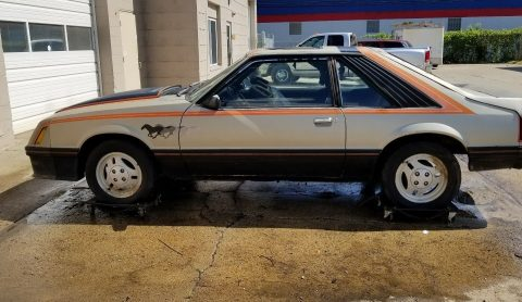 1979 Ford Mustang Indy pace car barn find project for sale